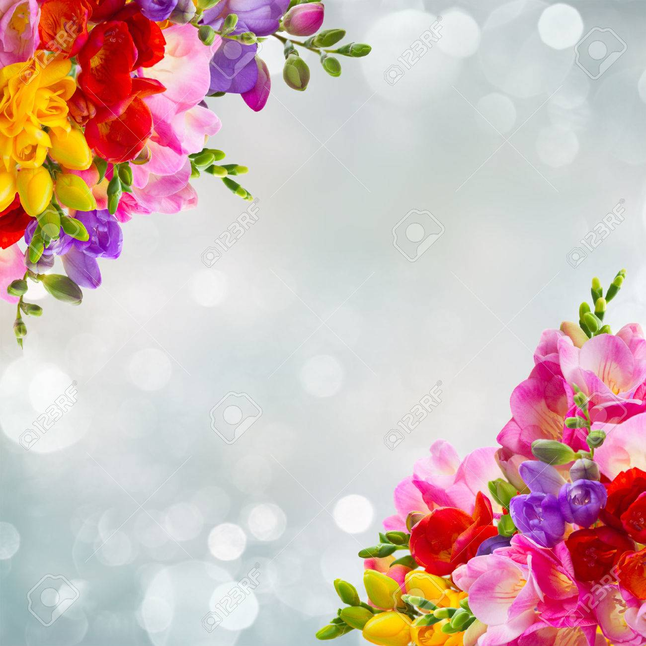 Yellow red pink and blue freesia flowers frame over blue stock photo yellow red pink and blue freesia flowers frame over blue background mightylinksfo