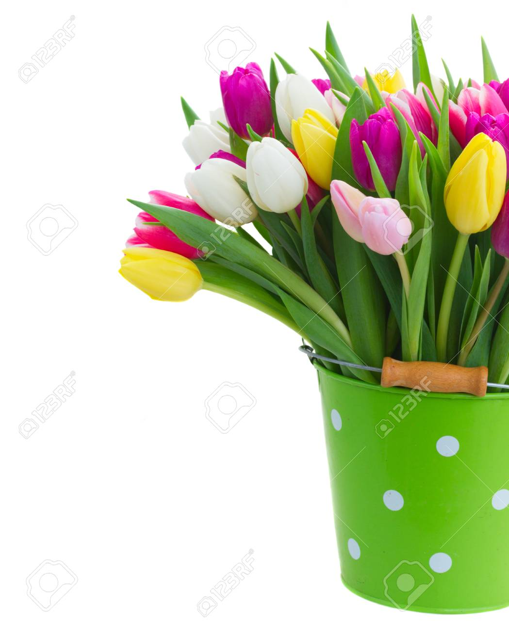 Bunch of purple pink yellow and white tulip flowers in green bunch of purple pink yellow and white tulip flowers in green pot for mothers mightylinksfo