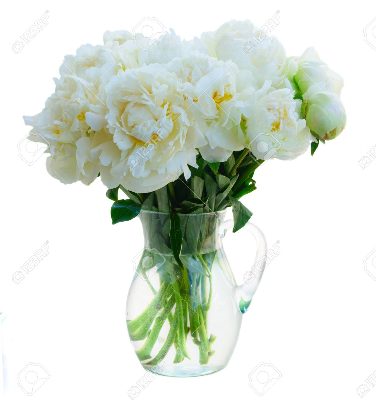 White peony flowers bouquet in vase isolated on white background stock photo white peony flowers bouquet in vase isolated on white background mightylinksfo