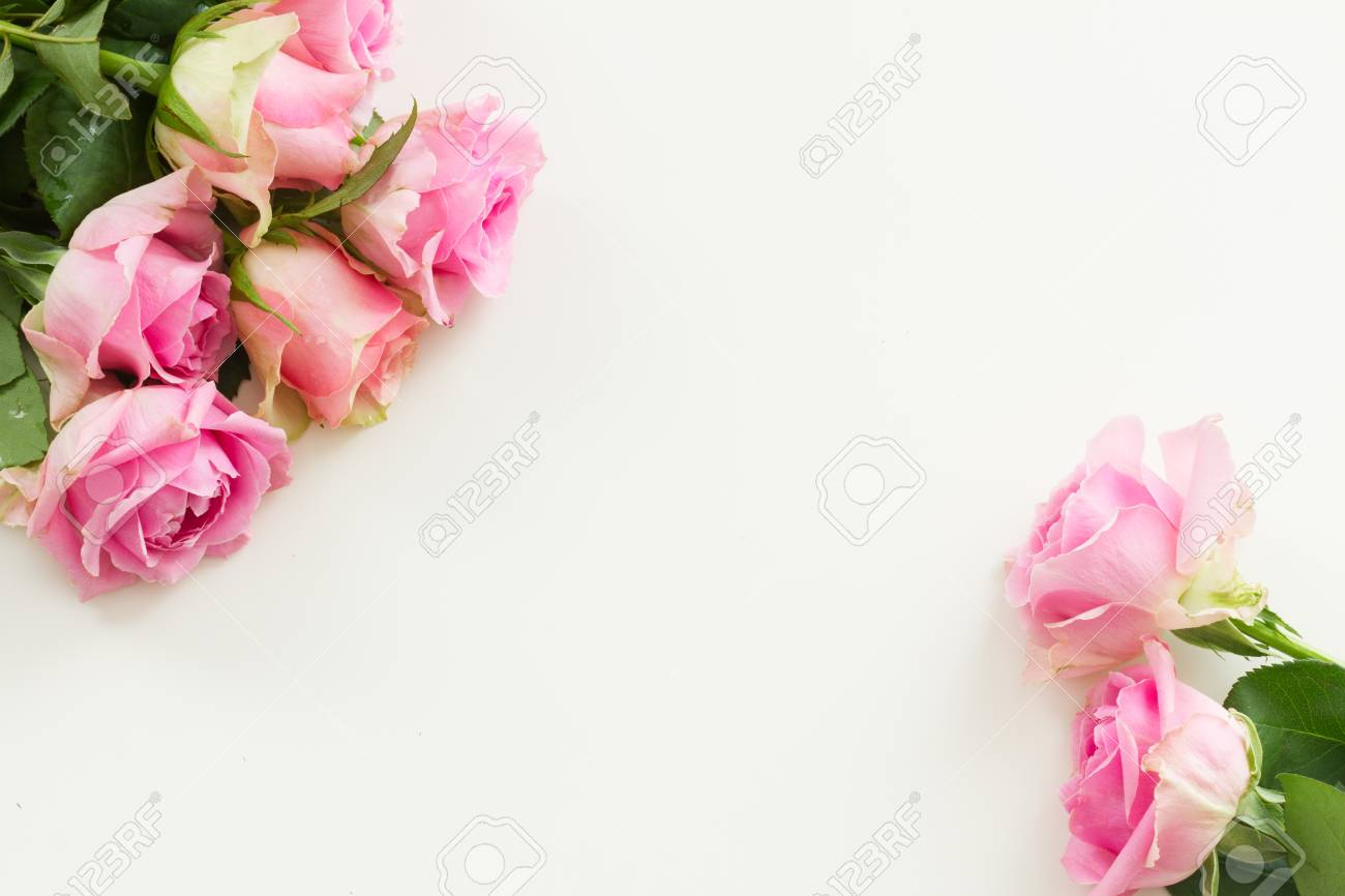Styled desktop scene with pink fresh rose flowers, copy space on white table - 58175149