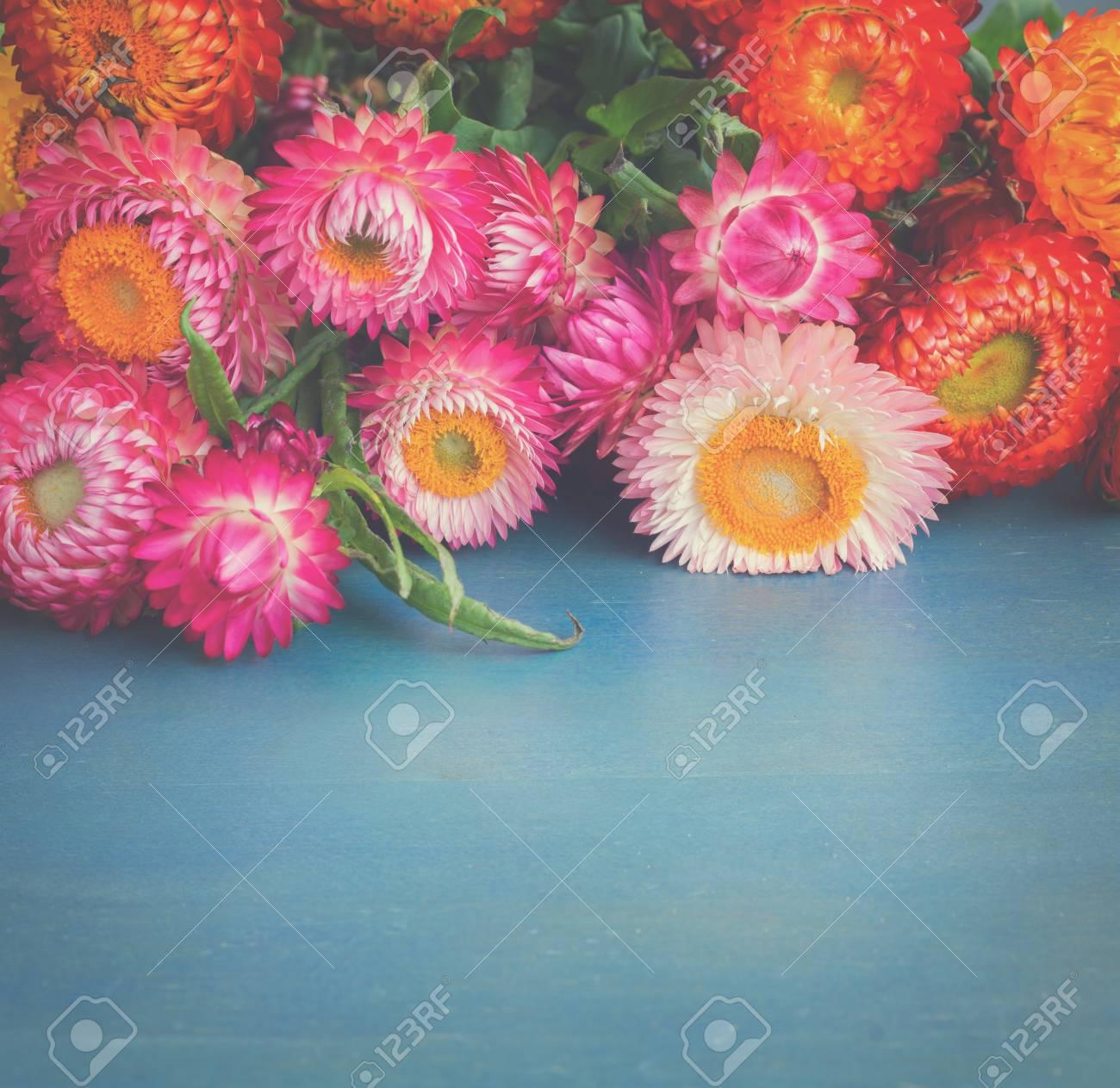 Bouquet of everlasting flowers bouquet on blue table with copy bouquet of everlasting flowers bouquet on blue table with copy space retro toned stock photo izmirmasajfo