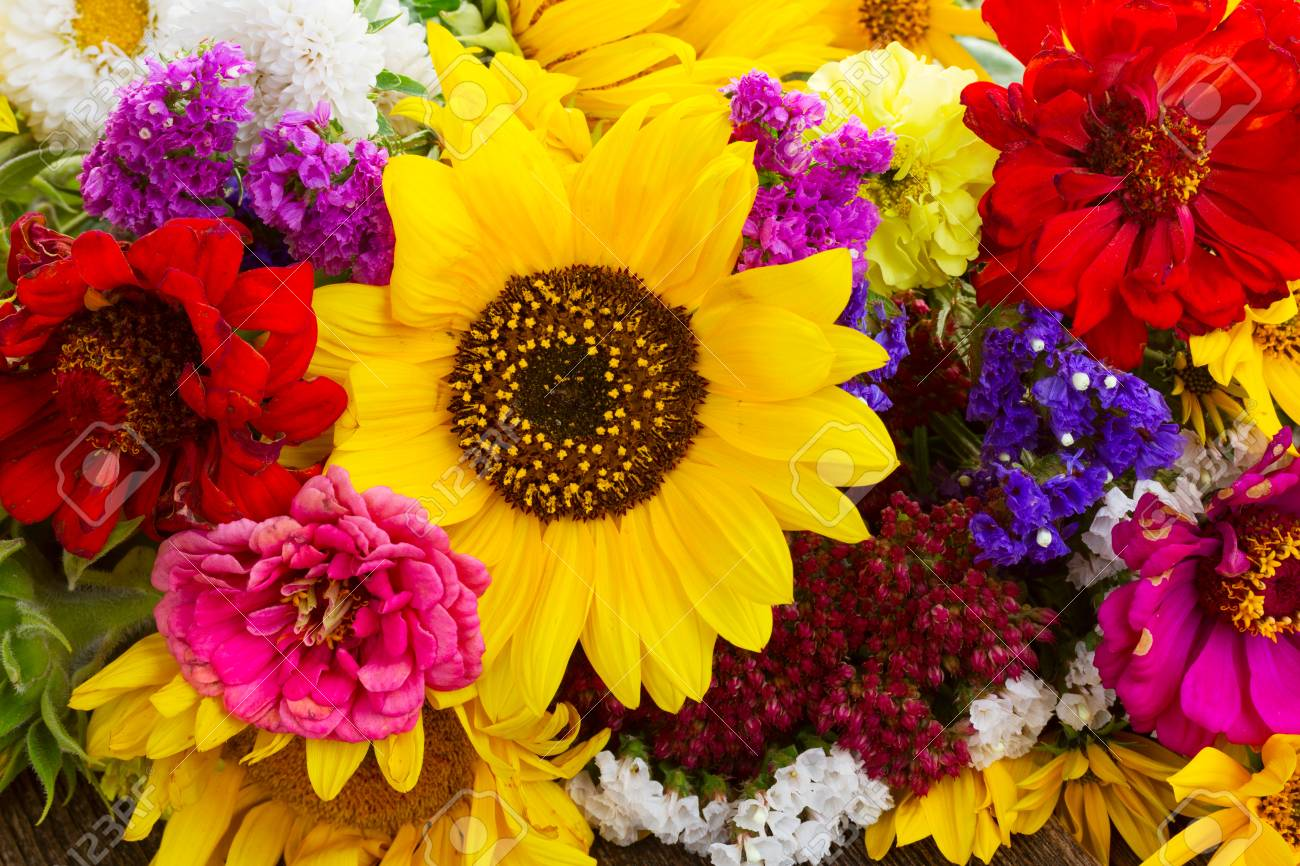 Bright Bouquet With Fresh Fall Flowers Close Up Background Stock Photo Picture And Royalty Free Image Image 66926496