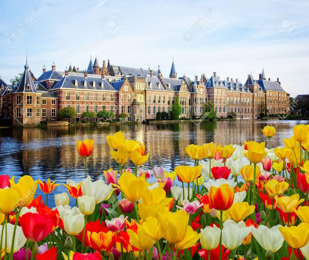 Binnenhof Dutch Parliament , The Hague Den Haag at spring, Netherlands - 69086953