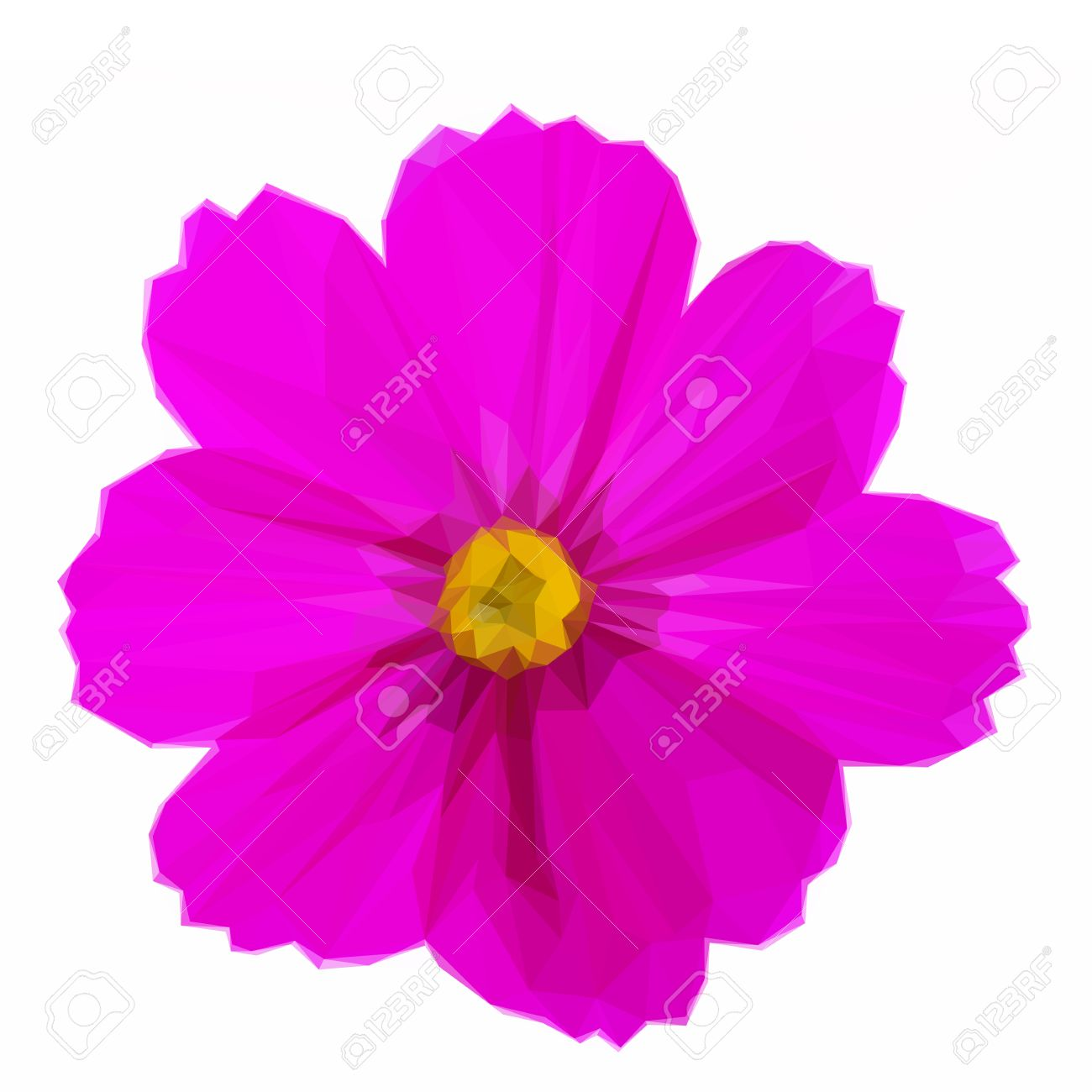 Low poly illustration one cosmos dark pink flower on white low poly illustration one cosmos dark pink flower on white background stock vector 67396421 mightylinksfo Images