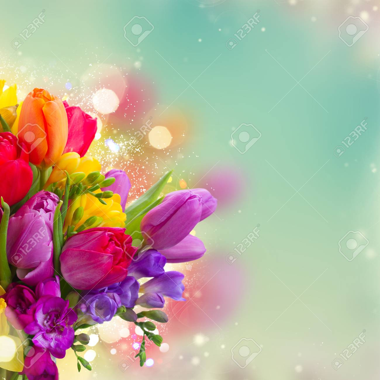 To acquire Spring Bright flowers pictures trends