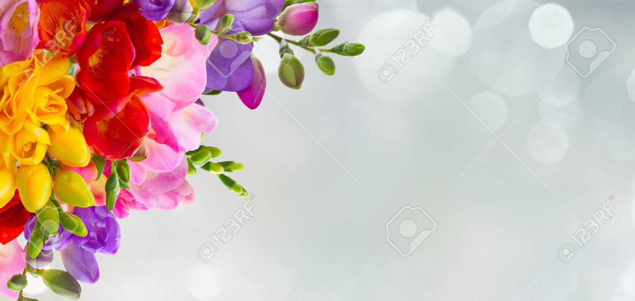 Yellow Red Pink And Blue Freesia Flowers Frame Over Blue
