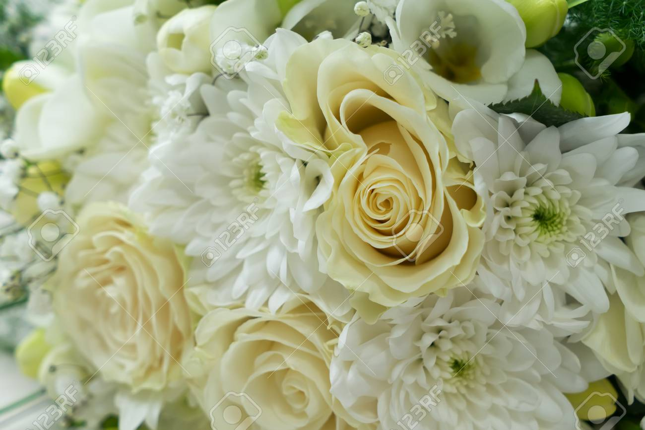 White Fresh Roses Freesia And Mum Flowers Bouquet Background Stock