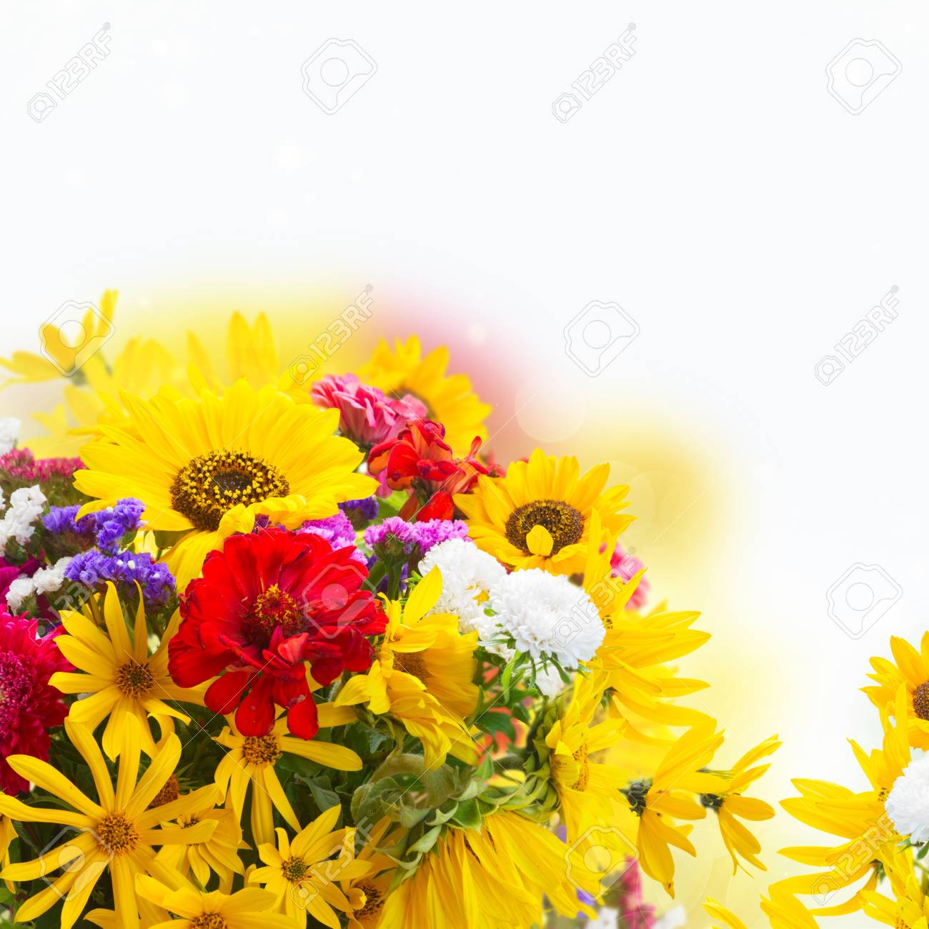 Bright Fresh Fall Bouquet Flowers Over White Background Stock Photo Picture And Royalty Free Image Image 83932187