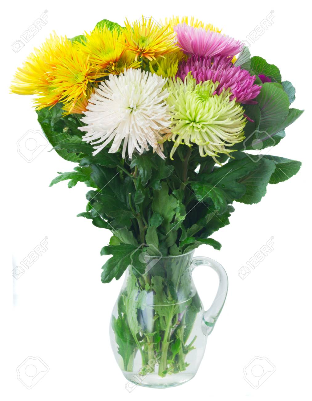 Chrisantemum Fresh Fall Flowers Bouquet In Vase Isolated On White
