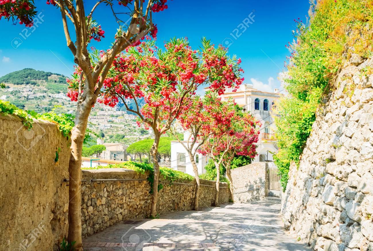 Street in Ravello village, Amalfi coast of Italy, toned image - 101609899