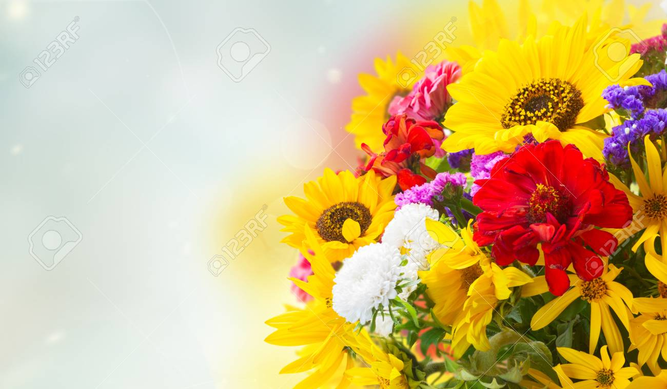 Bright Fresh Fall Bouquet Flowers Ob Blue Bokeh Background Banner Stock Photo Picture And Royalty Free Image Image 102072068