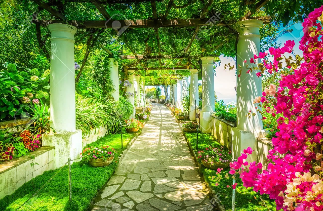 Beautiful pathway in garden, nature of Capri island, Italy, retro toned - 122633224