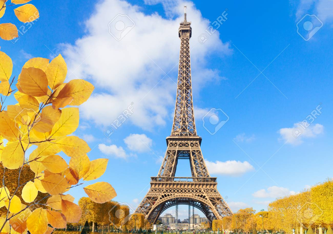 Eiffel Tower in sunny spring day in Paris, France at fall - 124707415