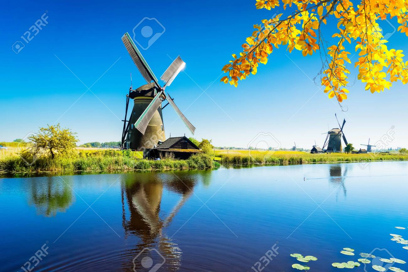 traditional dutch windmill with reflection at water, Kinderdijk at fall day, Netherland - 131811820