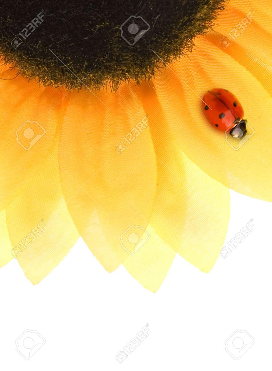 Ladybug sitting on a sunflower Stock Photo - 4380380
