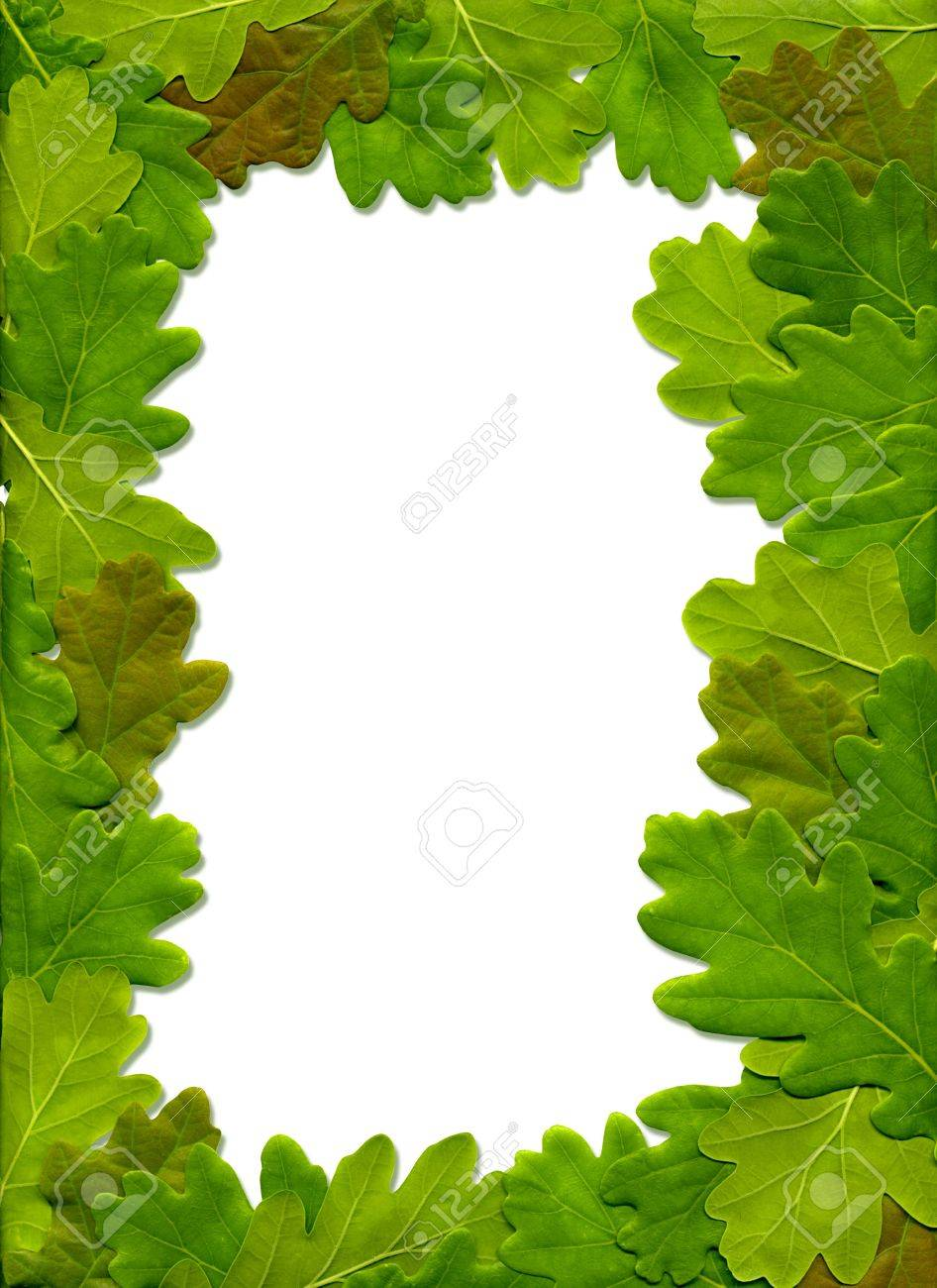 the frame of oak leaves stock photo picture and royalty free