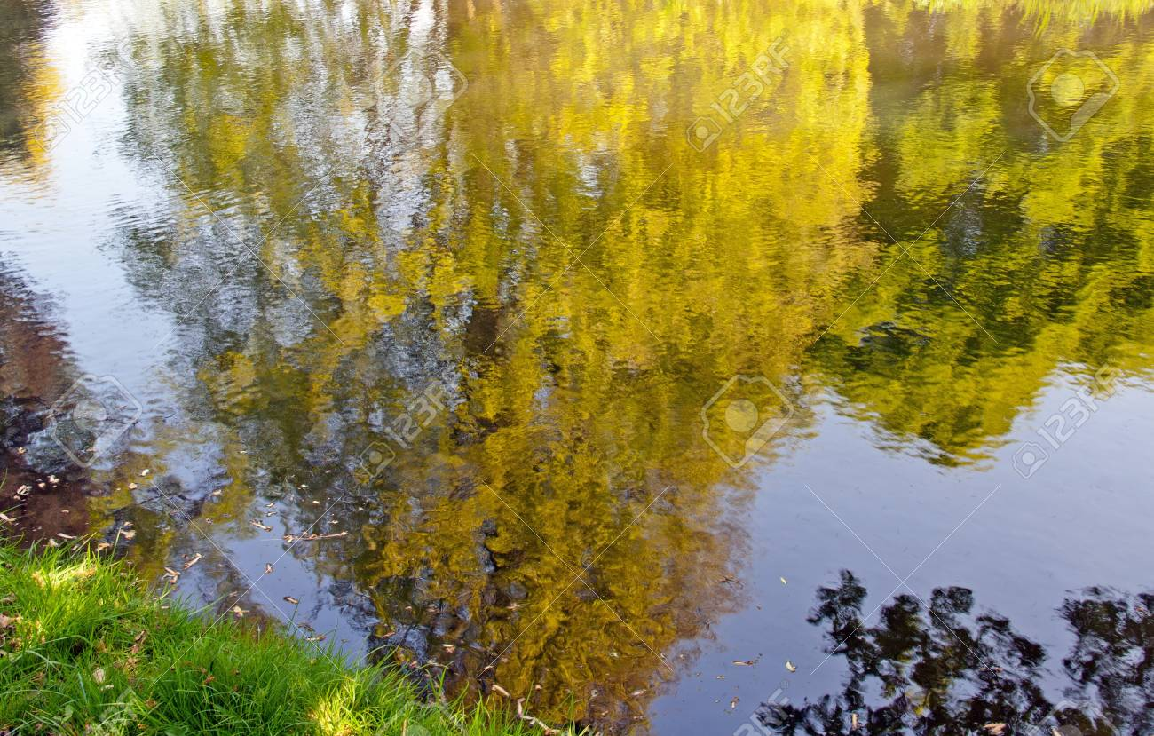 réflexions à l'eau Banque d'images - 10221257