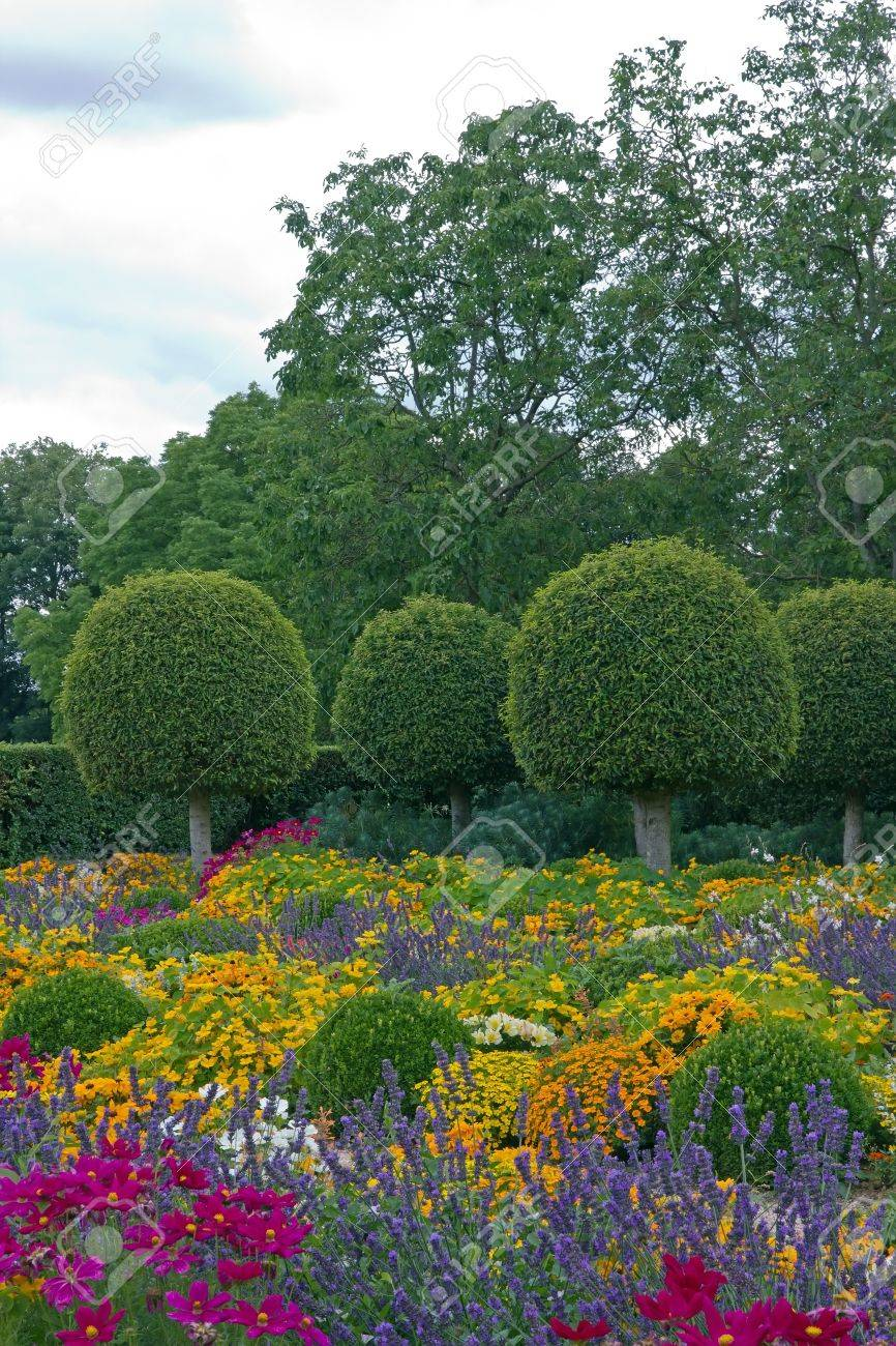 Formal garden, flowers and box tree cut in France Stock Photo - 17475512