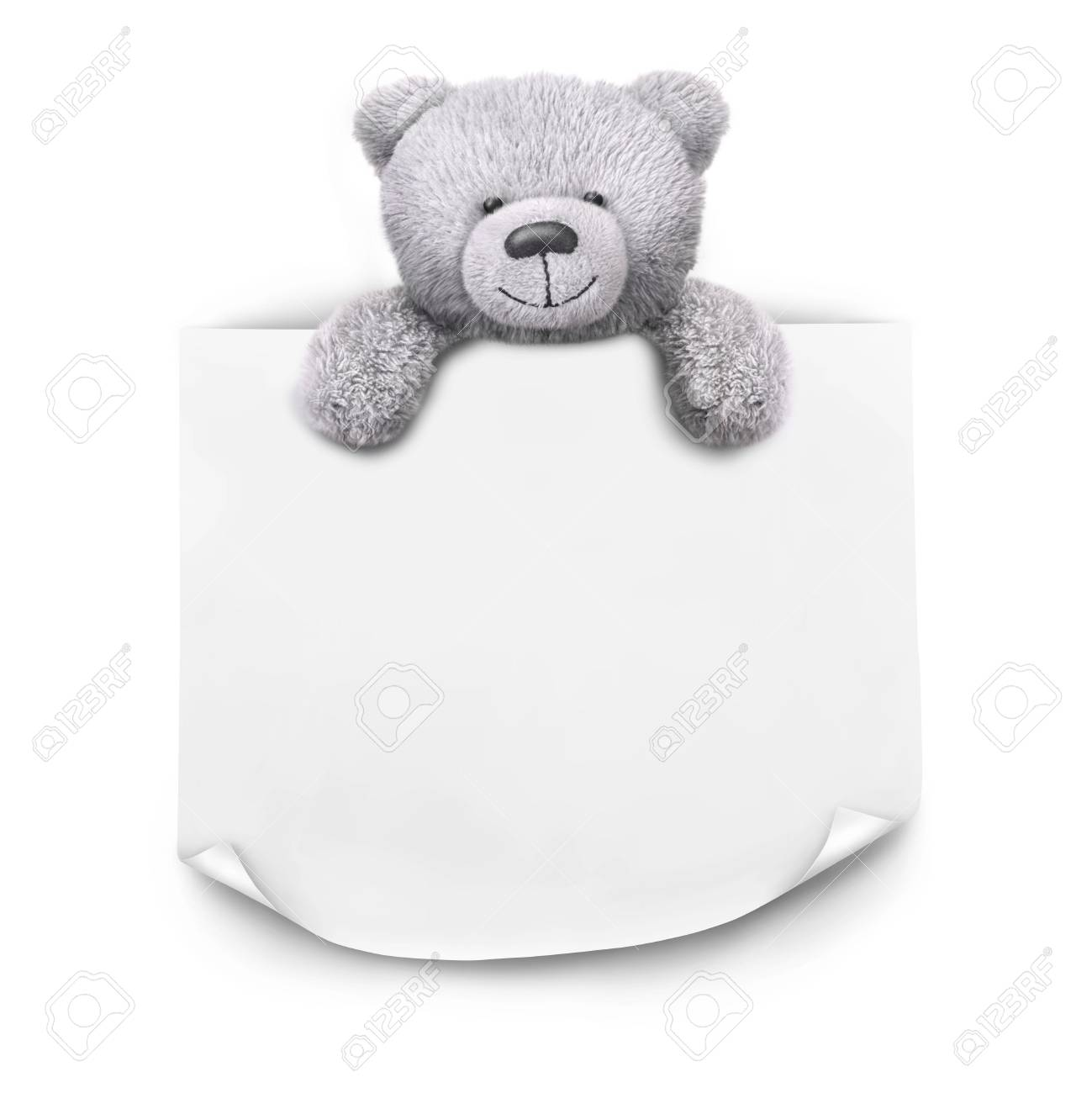 Grey Teddy Bear With Sticker Paper Message Template On White.. Stock ...