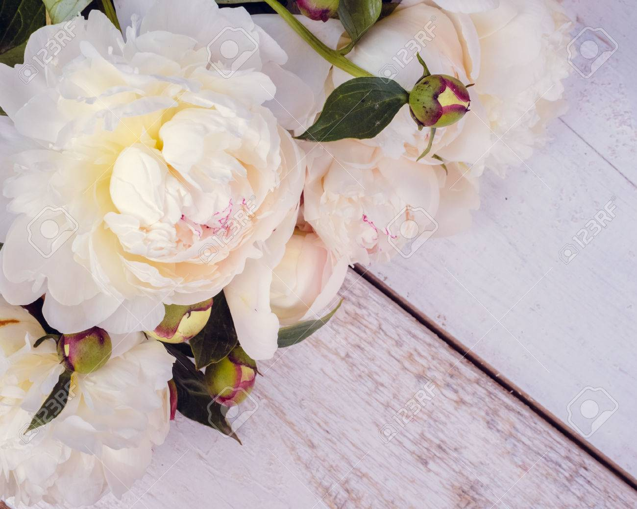 Peony background white peonies on wooden table with place for white peonies on wooden table with place for text spring flower peony mightylinksfo