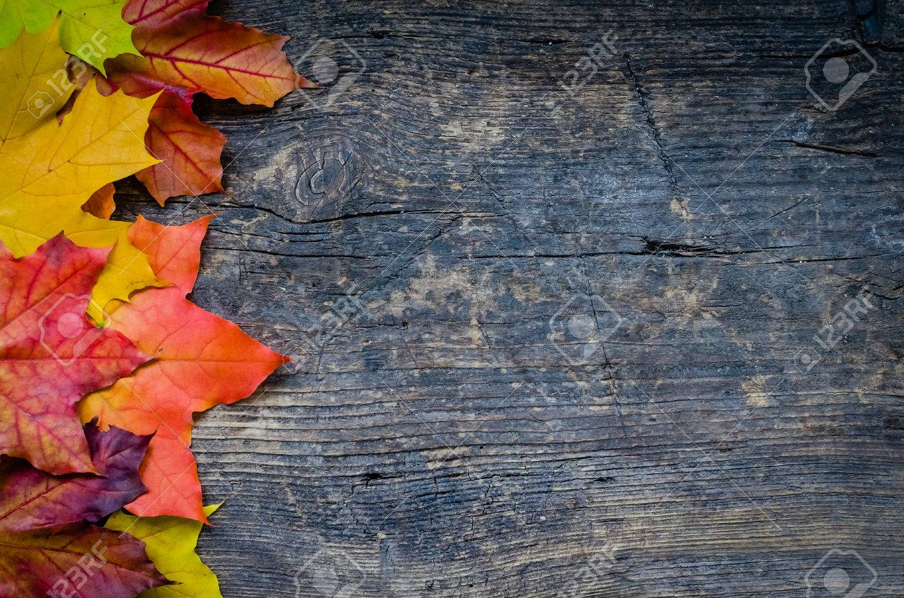 Autumn Background With Colorful Fall Maple Leaves On Rustic Wooden Table Place For Text