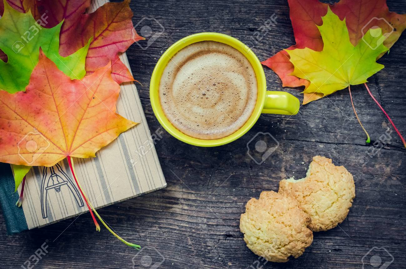 Autumn Still Life Warm Knitted Scarf Cup Of Coffee Cookies Stock Photo Picture And Royalty Free Image Image 87405561