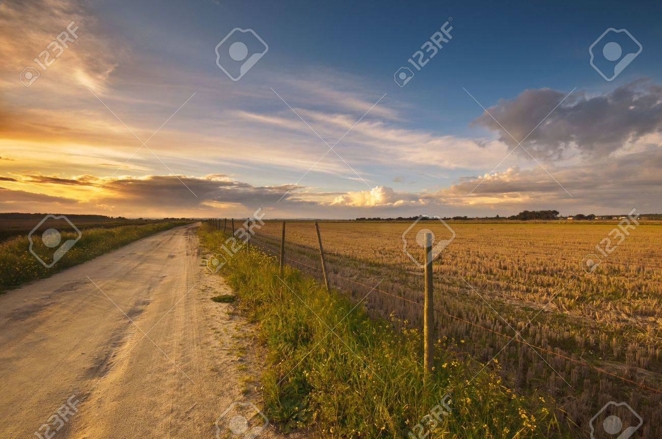 Sunset over dry ricefield, Ribatejo Portugal Stock Photo - 4669952