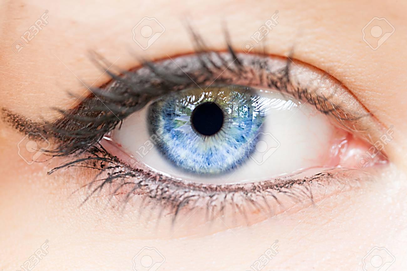 Female blue eye extreme close-up detail. Macro image of human eye. - 125798396