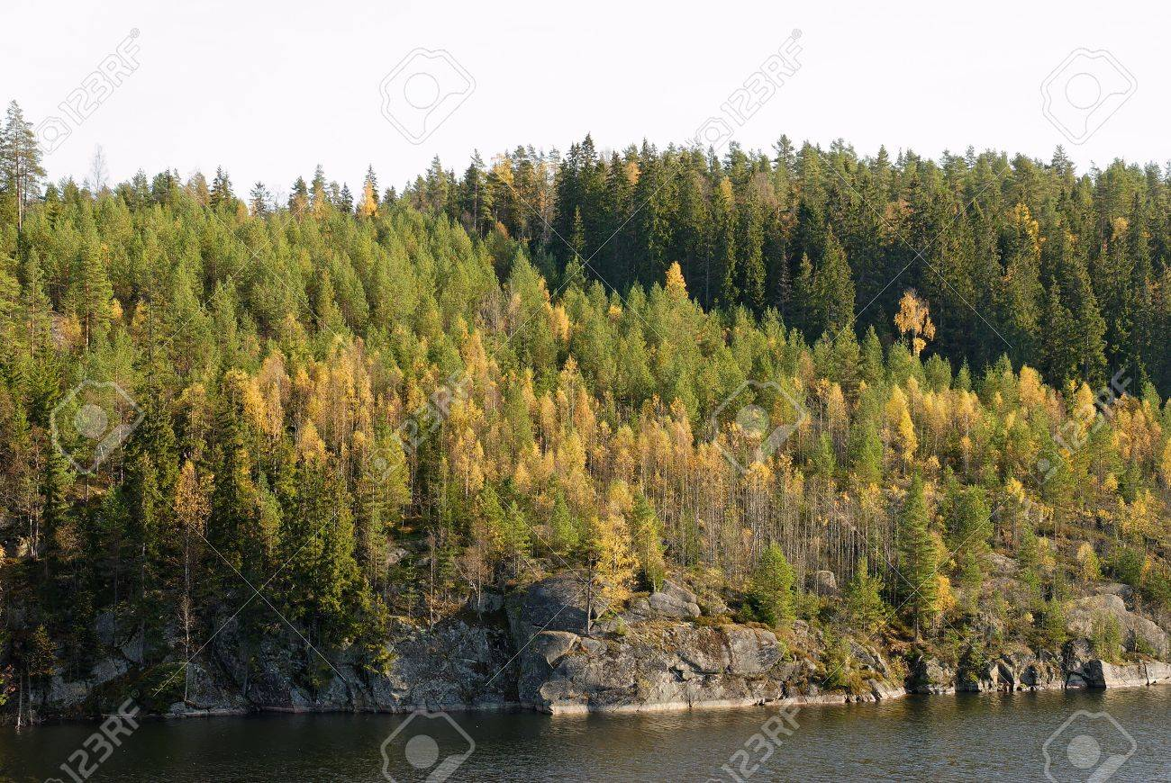 Forest in autumn colours by a mountain lake. Stock Photo - 3571312