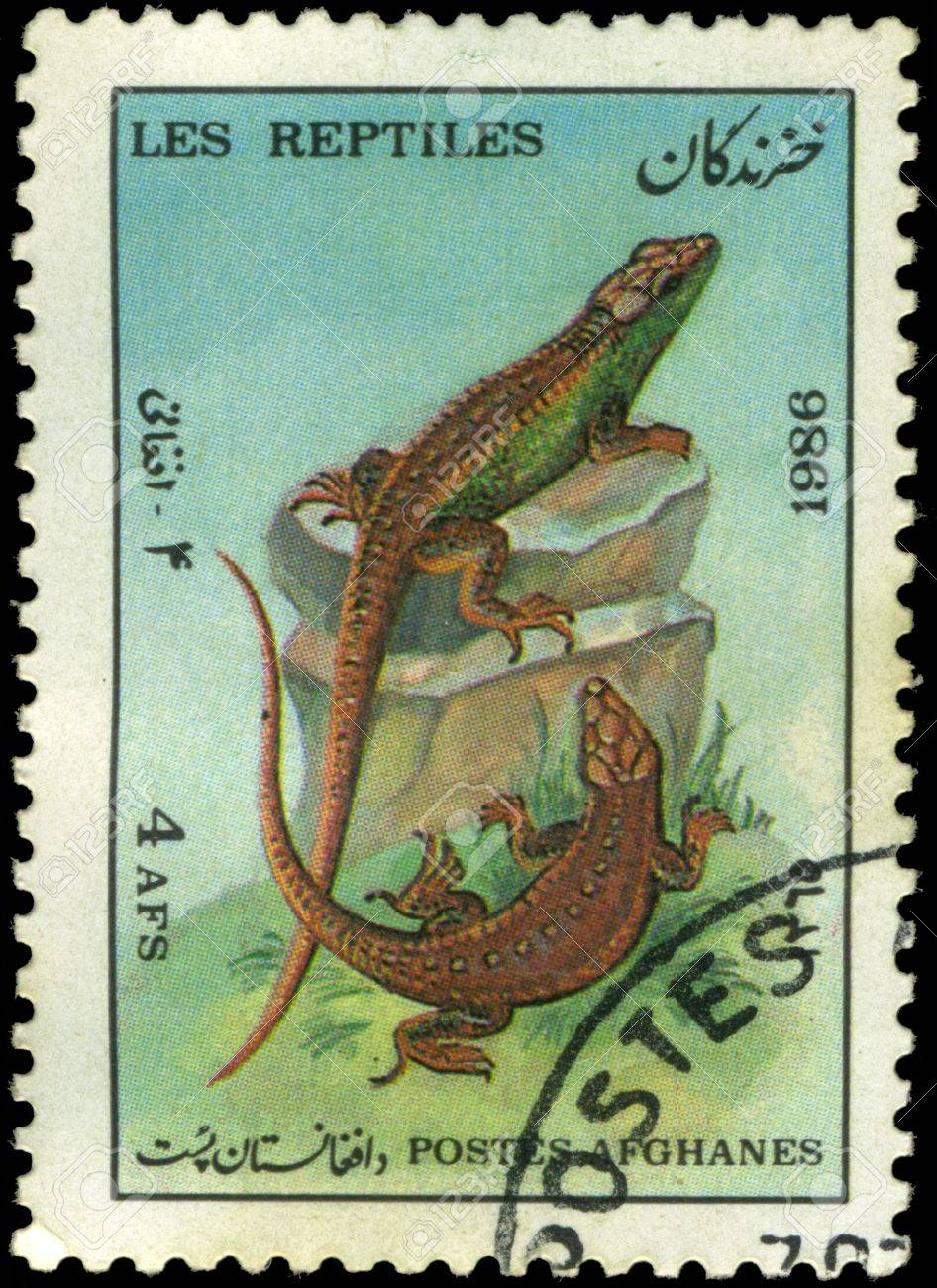Afghan stamp from 1986 depicting a lizard Stock Photo - 3834645