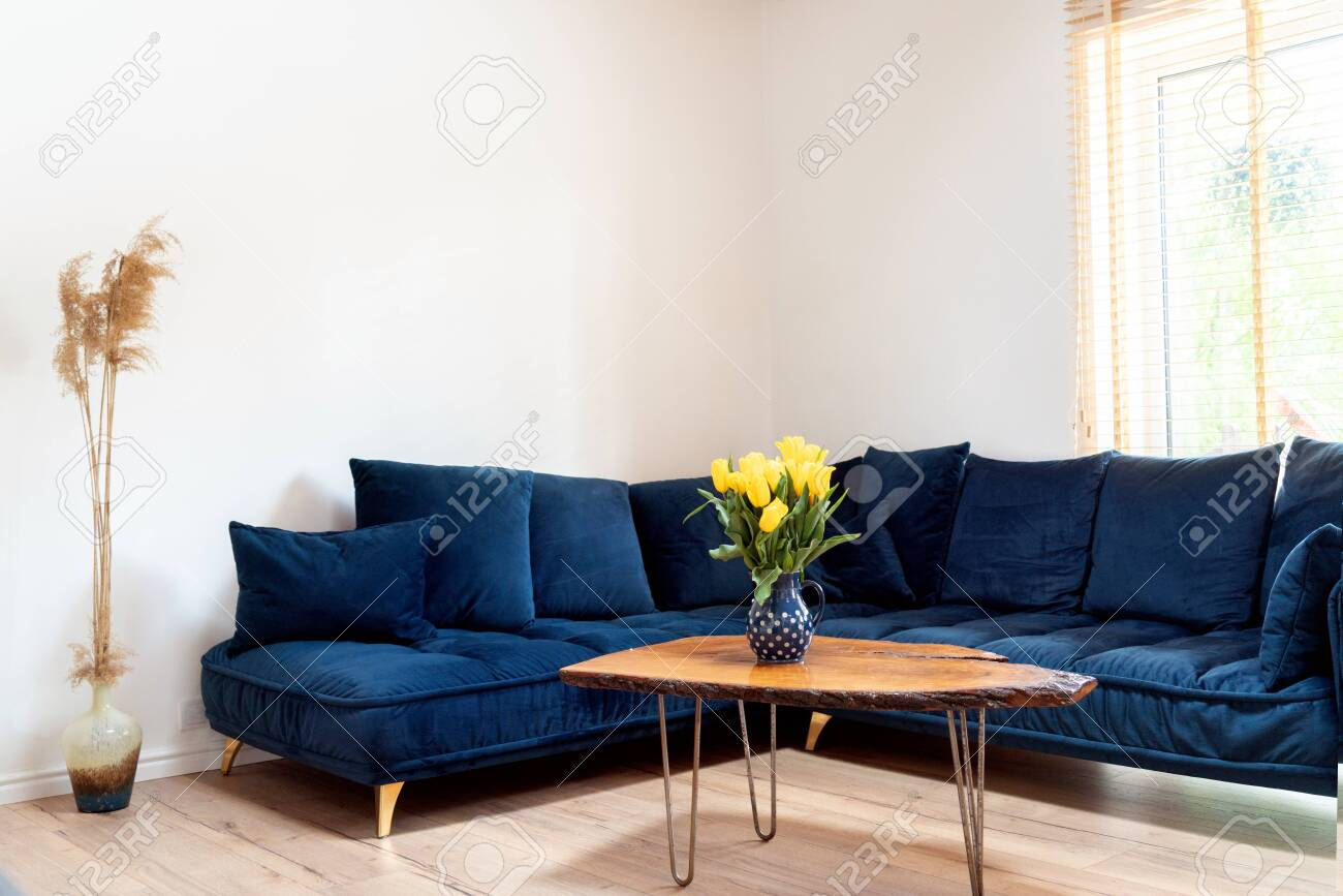 Stylish Boho Living Room Interior With Design Navy Blue Sofa Stock Photo Picture And Royalty Free Image Image 147551482