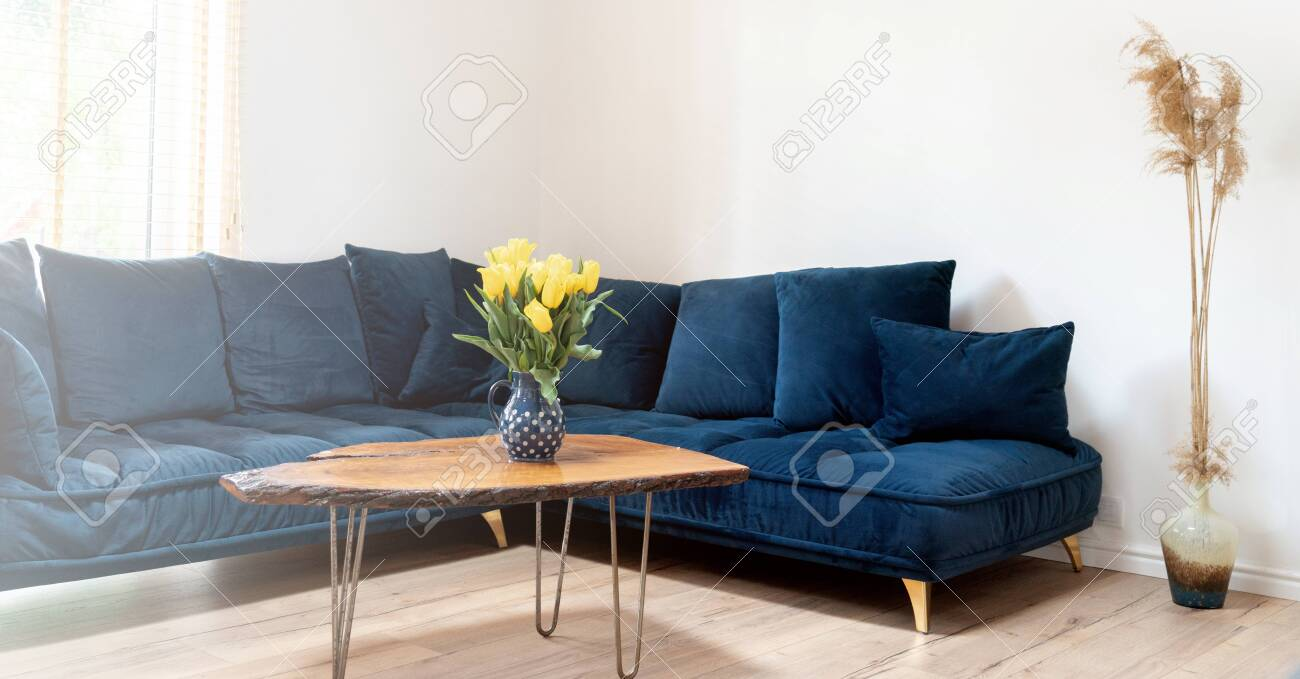 Picture of: Stylish Boho Living Room Interior With Design Navy Blue Sofa Stock Photo Picture And Royalty Free Image Image 147551826