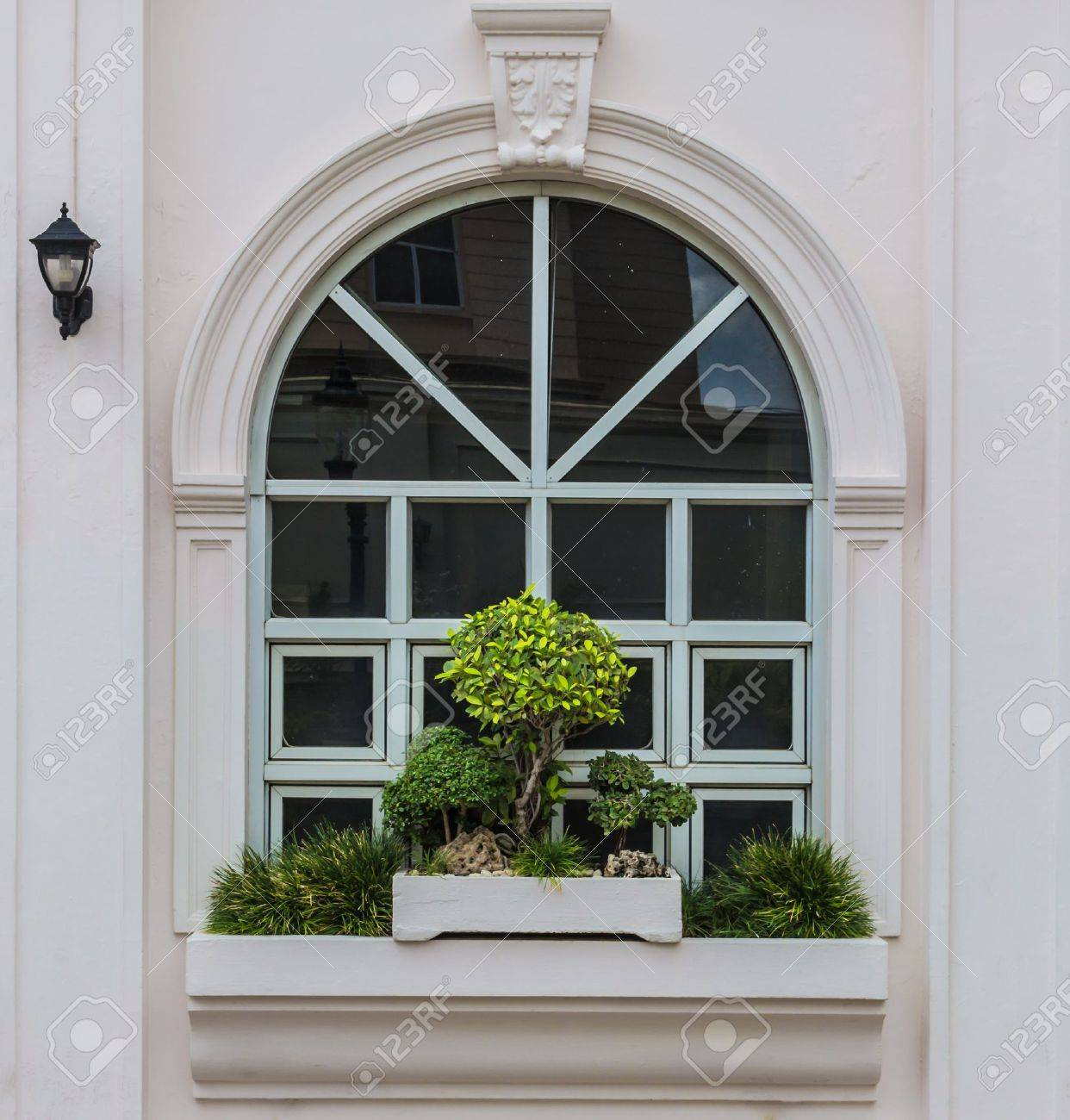 Arch window with bonsai decoration and street lamp reflection Stock Photo - 14752490
