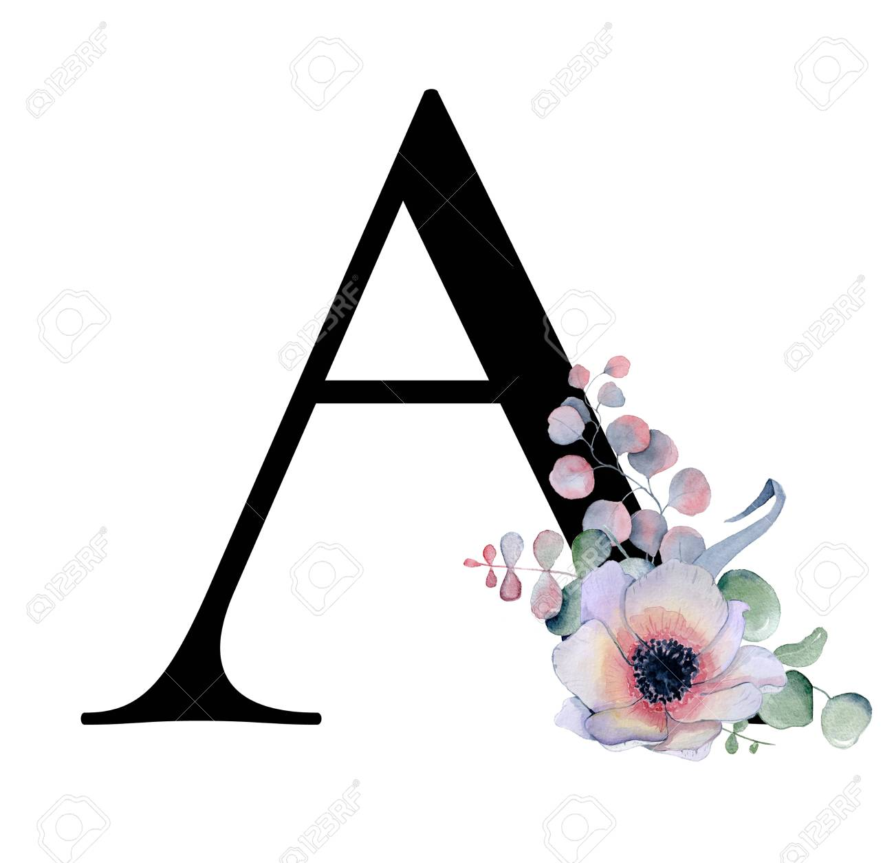 Floral watercolor alphabet. Monogram initial letter A design with hand drawn peony and anemone flower and black panther for wedding invitation, cards, logos - 101737283