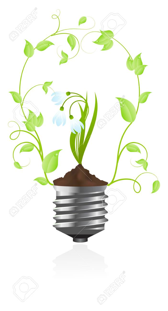 Tungsten light bulb with plant of snowdrop inside. Isolated on white background. Stock Vector - 6236875