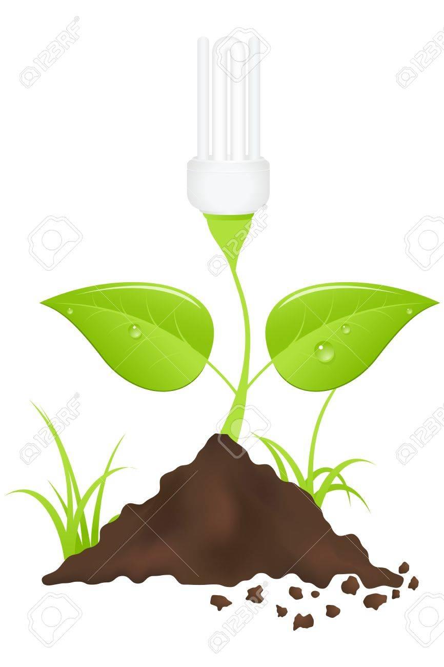 Light bulb plant. Save energy. Vector illustration. Stock Vector - 10998803