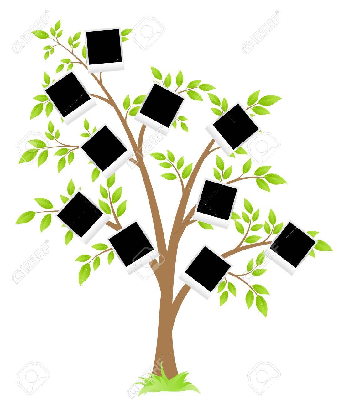 Rbol De Familia. Árbol Con Los Marcos Para Las Fotos. Ilustración ...