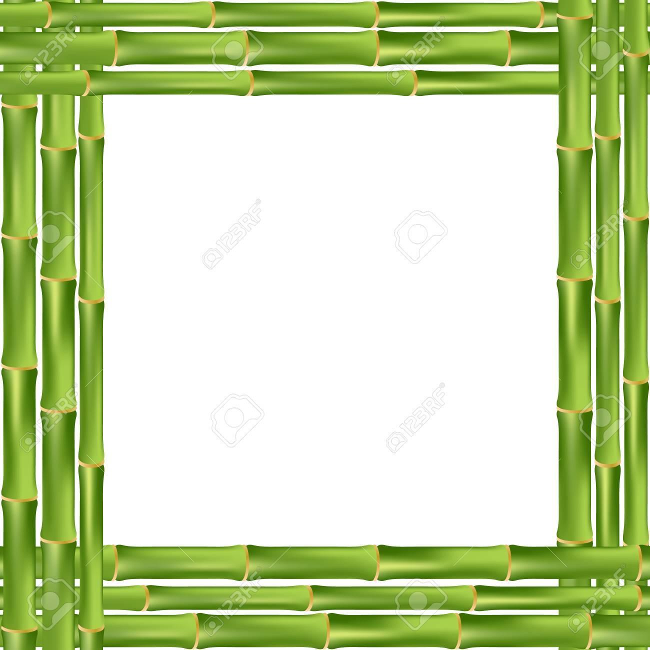 Bambus-Rahmen Auf Einem Weißen Hintergrund. Vektor-Illustration ...