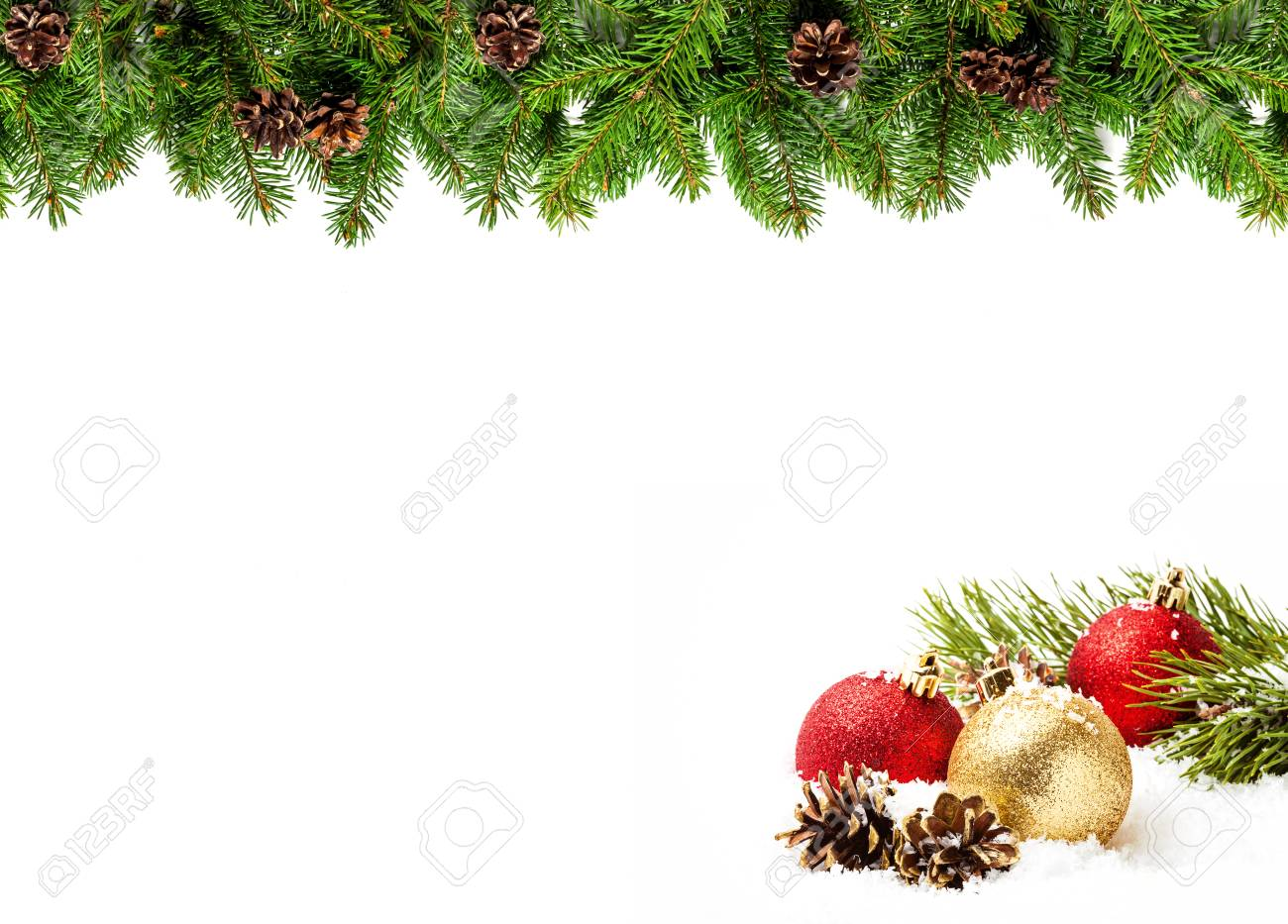 Christmas Card Border.Christmas Tree Branches On White Background As A Border Or Template
