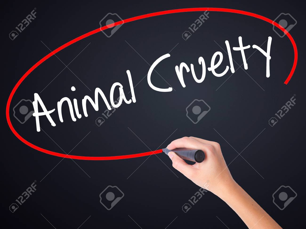 Spm English Essay Stock Photo  Woman Hand Writing Animal Cruelty On Blank Transparent Board  With A Marker Isolated Over Black Background Stock Photo Cause And Effect Essay Papers also Learning English Essay Writing Woman Hand Writing Animal Cruelty On Blank Transparent Board Stock  High School Admission Essay Sample