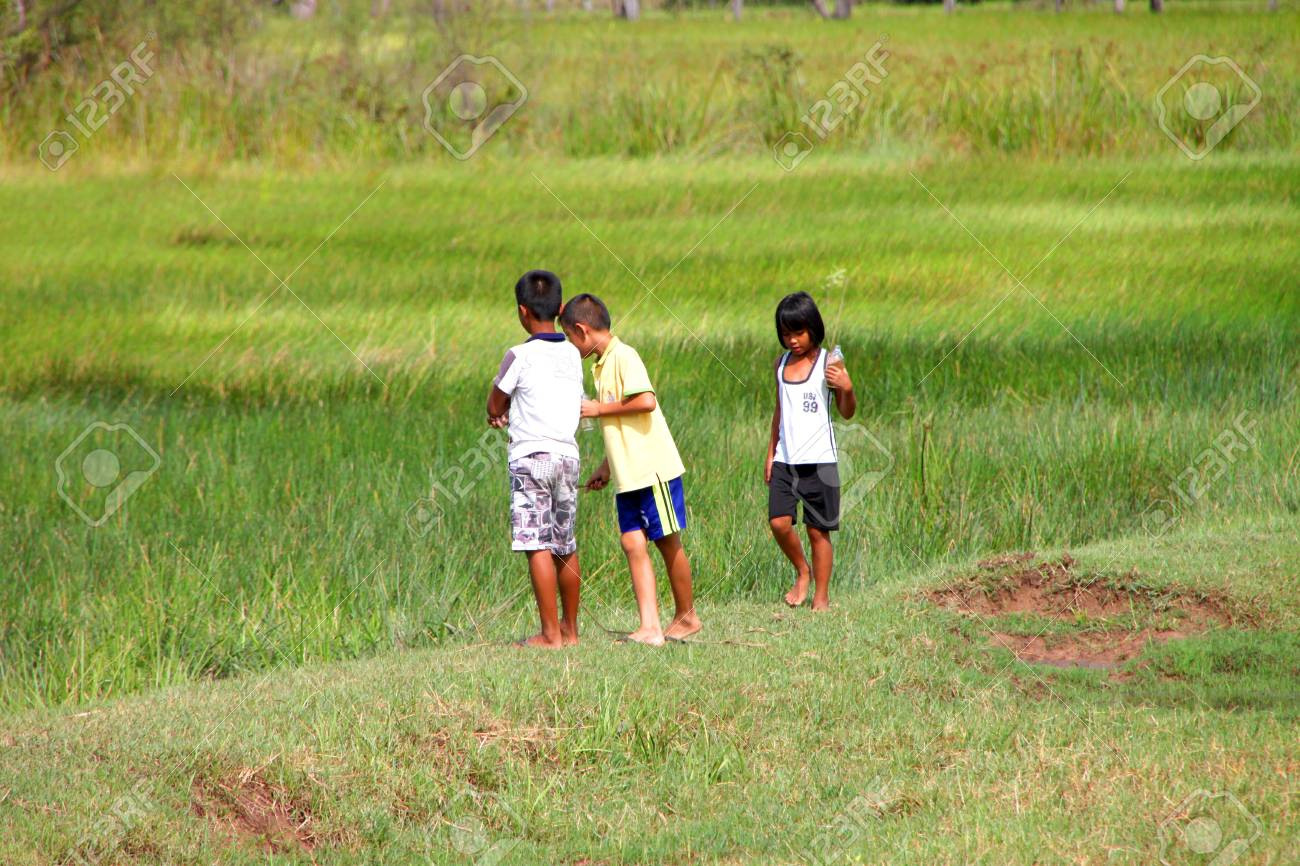 PAYAKKAPHUMPHISAI, MAHASARAKHAM - JULY 7 : Unidentified children are playing and seeking little fishes from rural field on July 7, 2012 at Payakkaphumphisai, Mahasarakham, Thailand. Stock Photo - 17063364