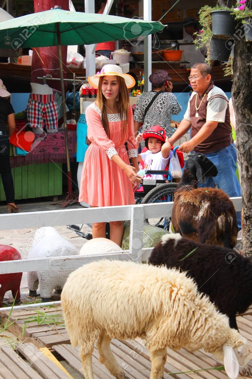 AYUTTHAYA, THAILAND - JANUARY 6 : Unidentified woman is feeding sheeps in Ayothaya Floating Market on January 6, 2013 at Ayutthaya, Thailand. Stock Photo - 17356144