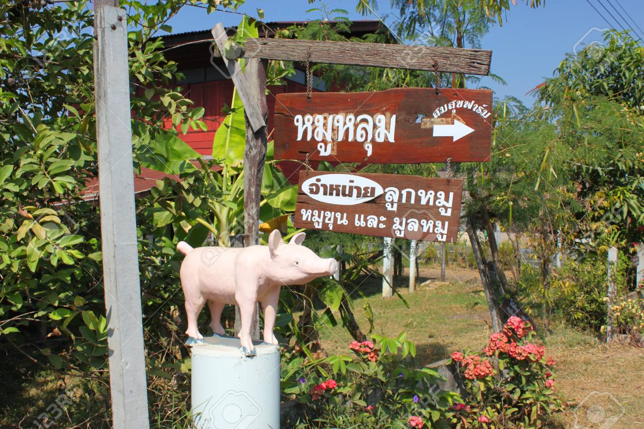 Pig statue and telling sign to economic self-sufficiency village farm on December 26, 2012 at Nong Pheuak village, Wapipatum, Mahasarakham. Stock Photo - 17392879