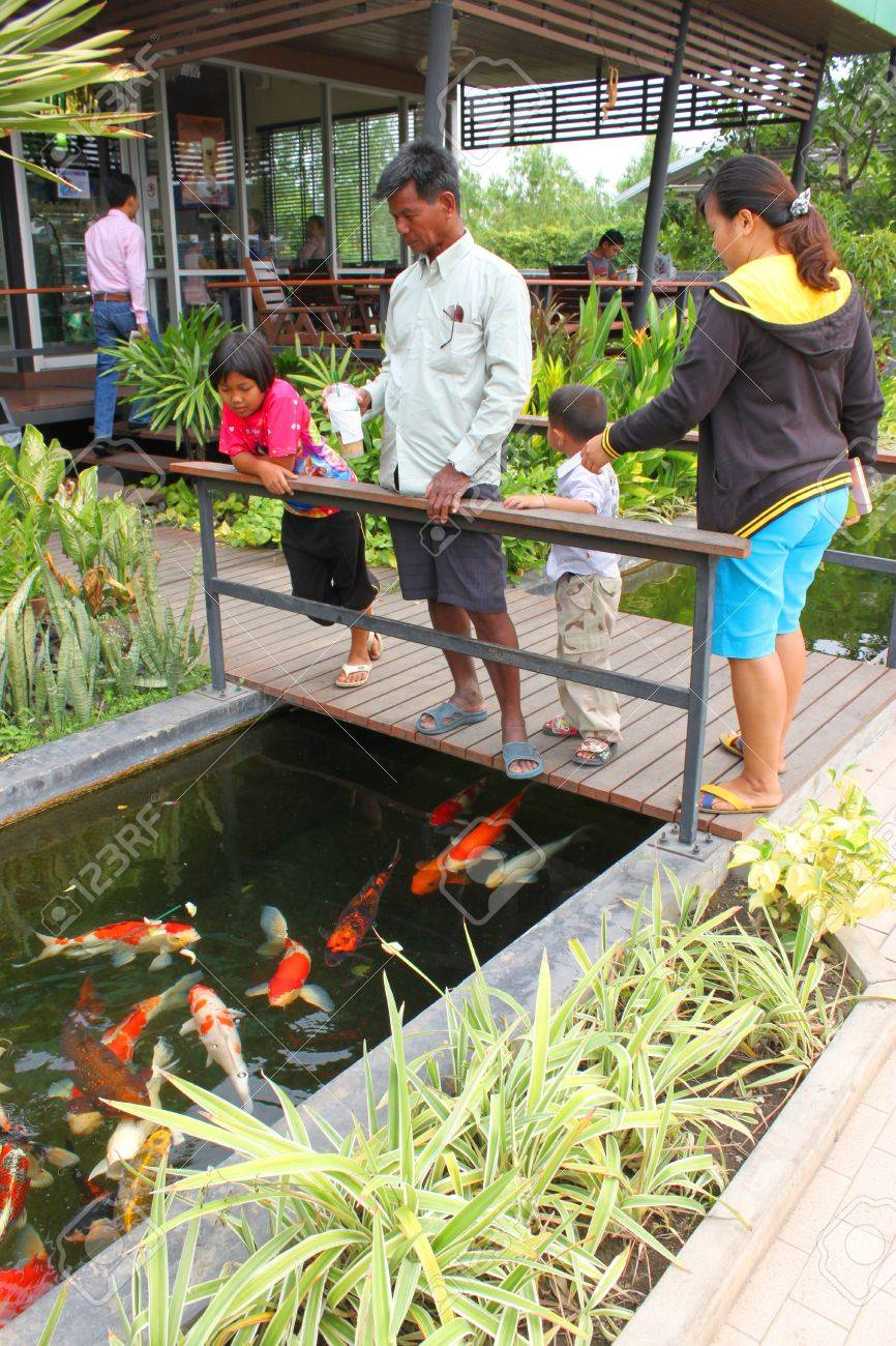 MUANG, BURIRAM - JANUARY 26 : Unidentified tourists are looking at fishes in local aquarium garden park on January 26, 2013 at Muang, Buriram, Thailand. Stock Photo - 17950147