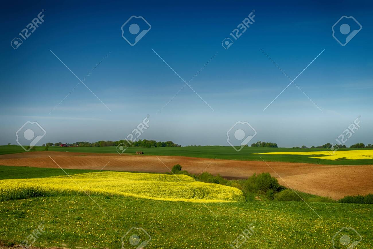 Agricultural landscape with rolling hills, ploughed farm field, meadow and a trees in a field - 124328929