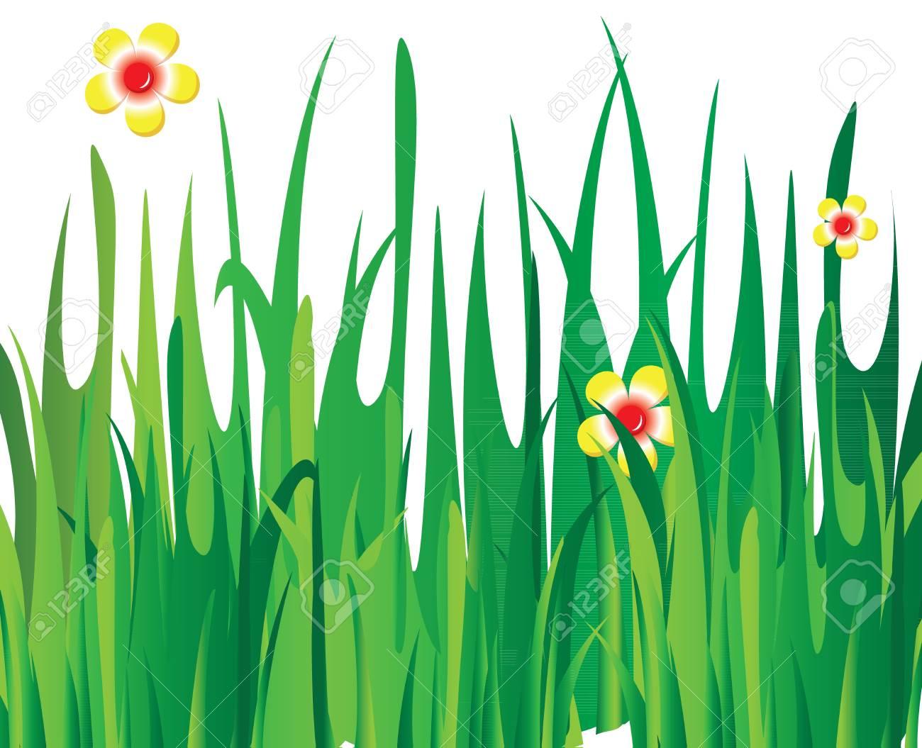 Green vector grass Stock Vector - 12711050