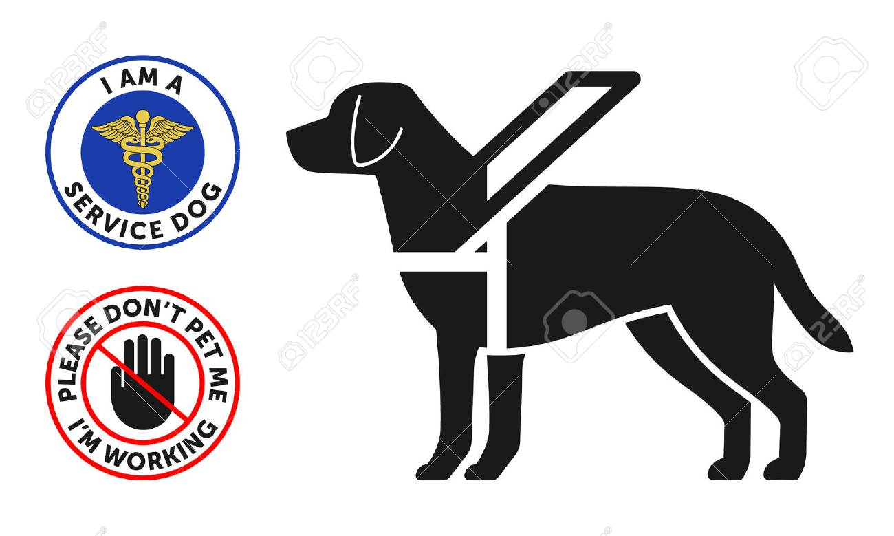 Guide-dog symbol with two round service dog badges - 74997698