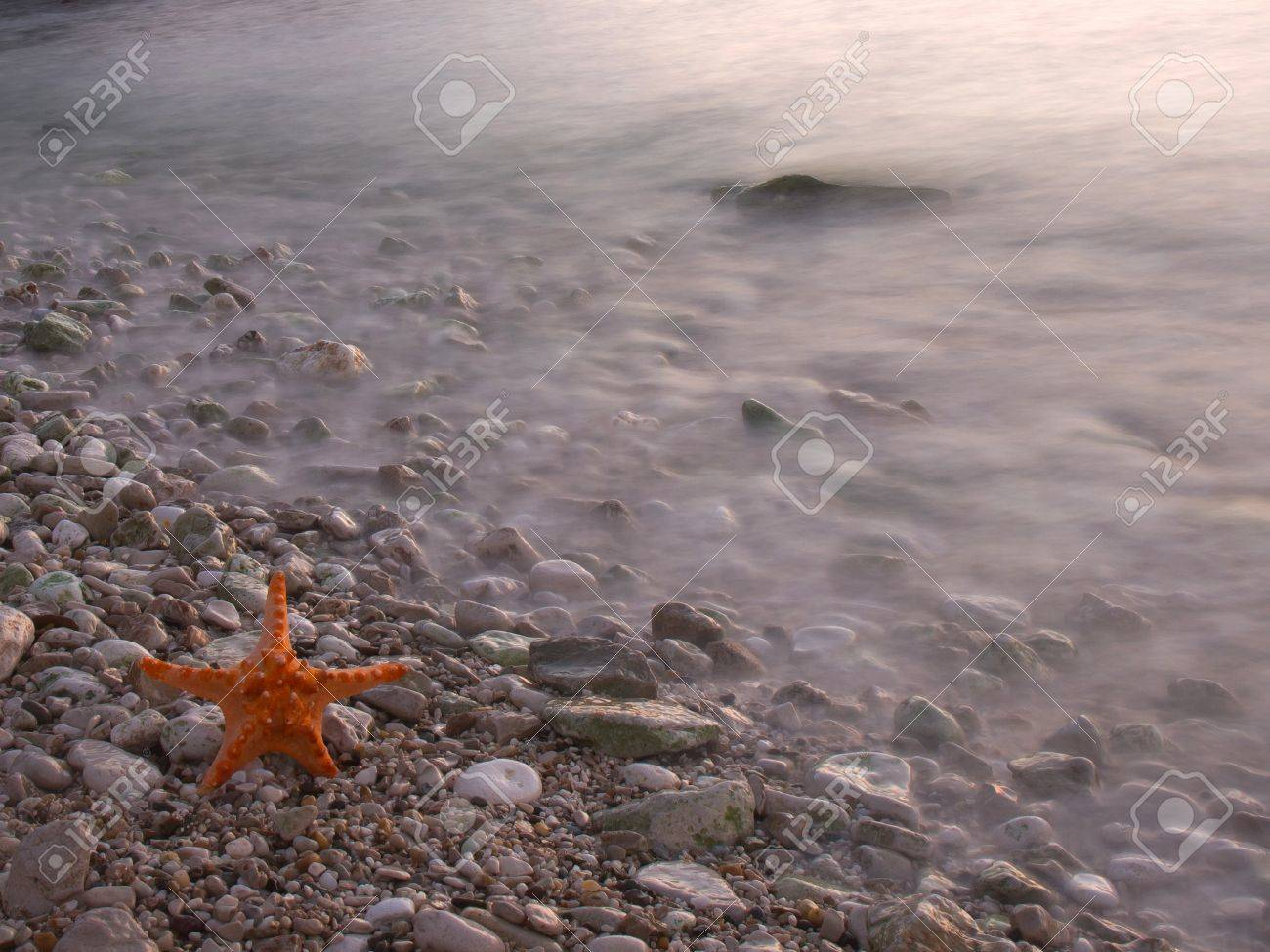 Summer vacations - starfish on sunset sea sand beach Stock Photo - 17069077
