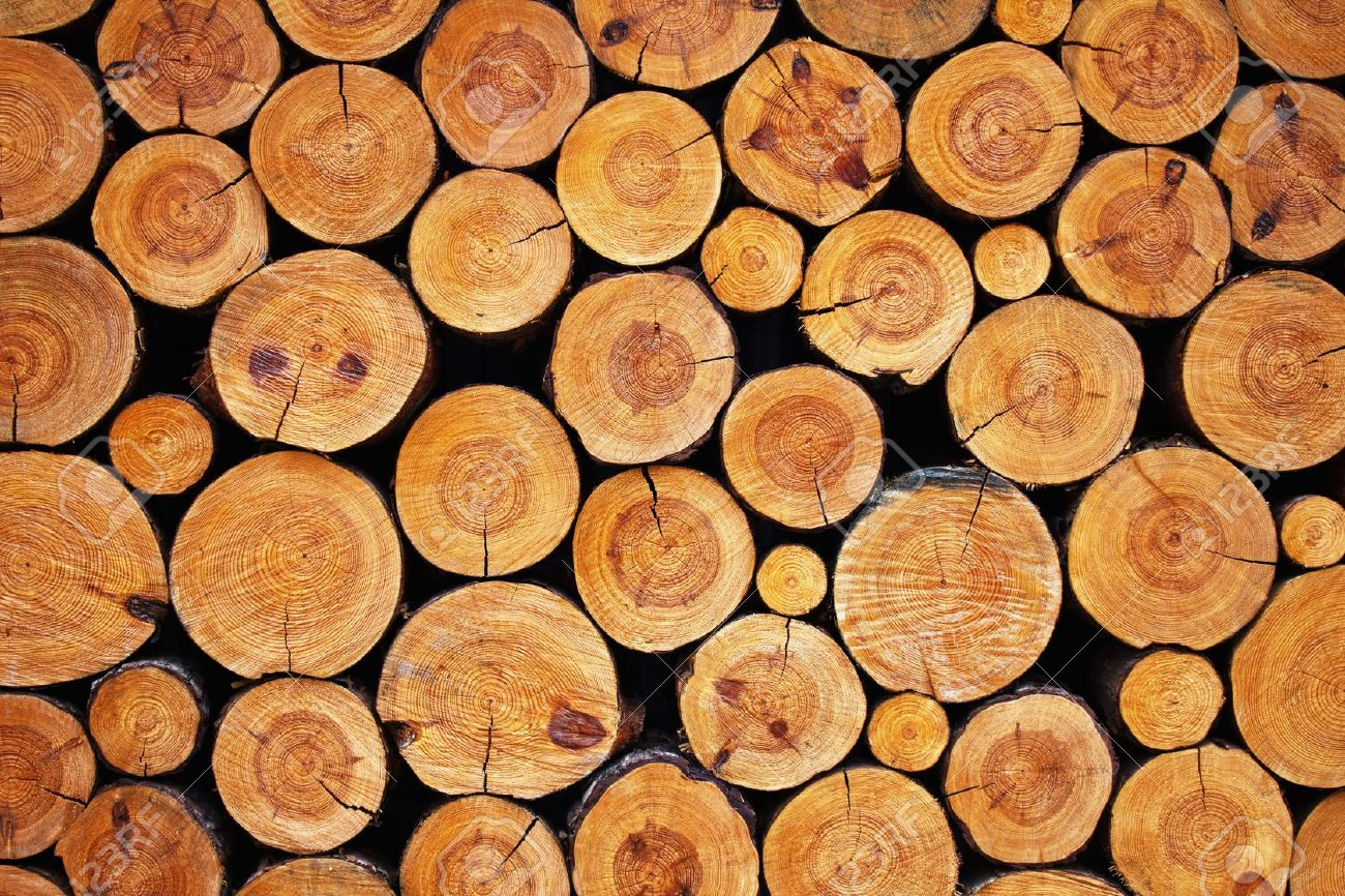 wood log images stock pictures royalty free wood log photos and