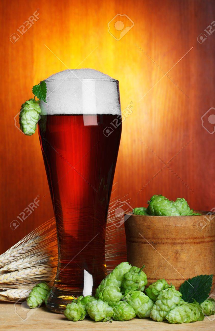 beer with hope and wheat still-life Stock Photo - 12827756